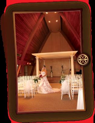 Tucson wedding venue tucson arizona locations places sites venues angelicas chapel junglespirit Images
